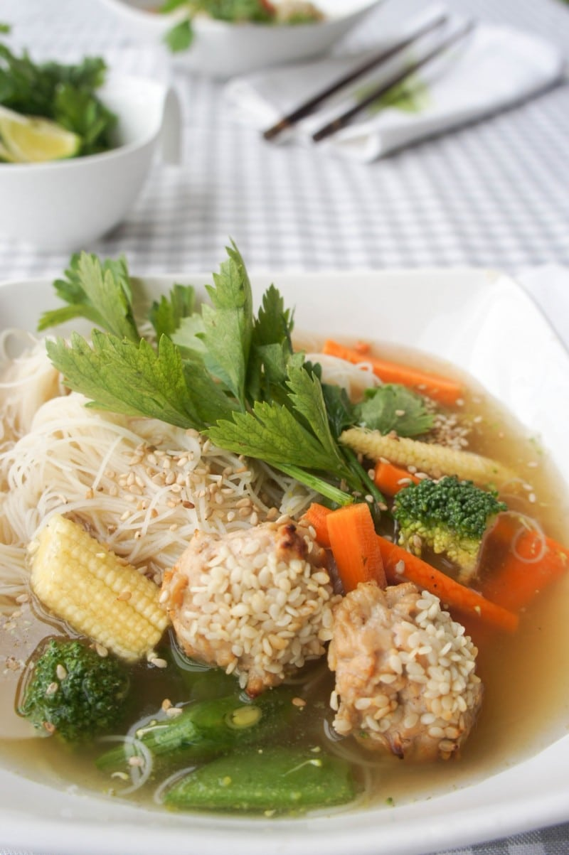 Vietnamese Inspired Broth, Chicken Soup
