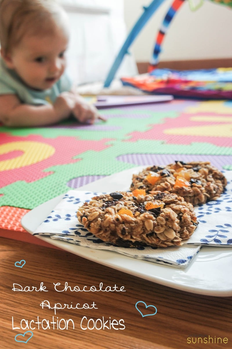DarkChocolateApricotLactationCookies