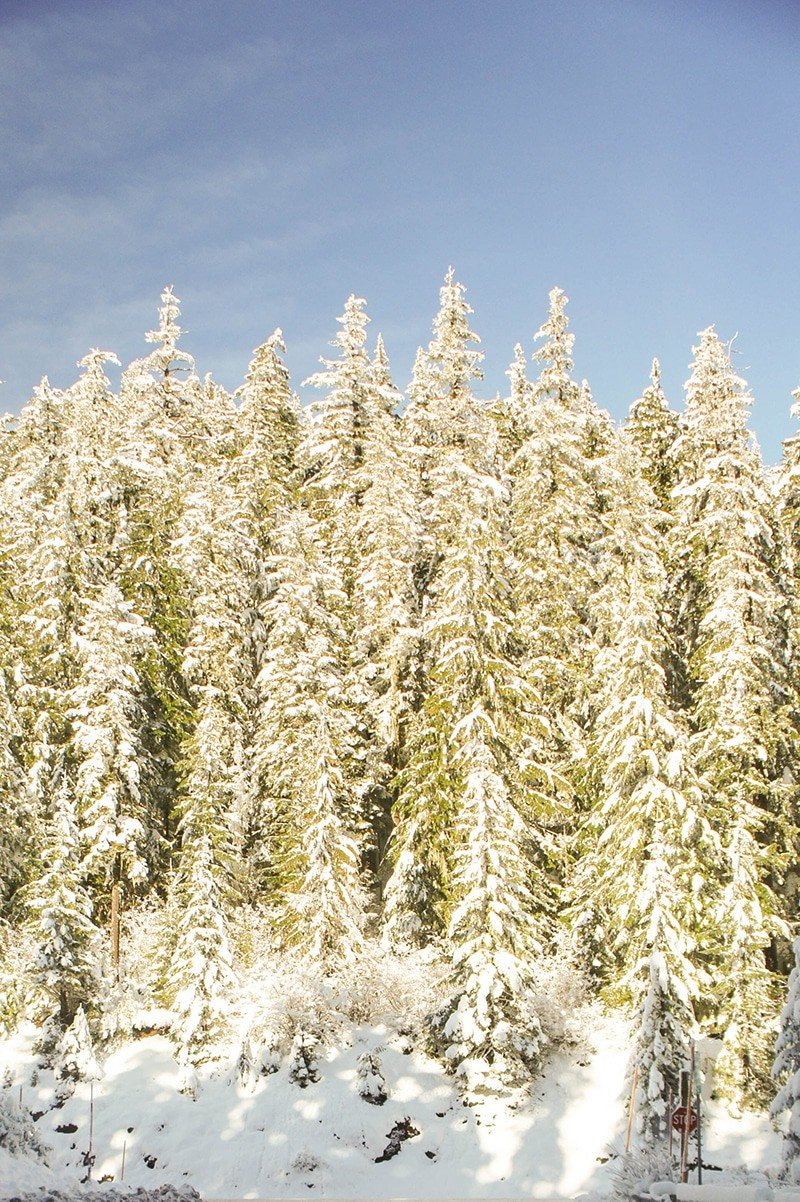 Central Oregon Snow
