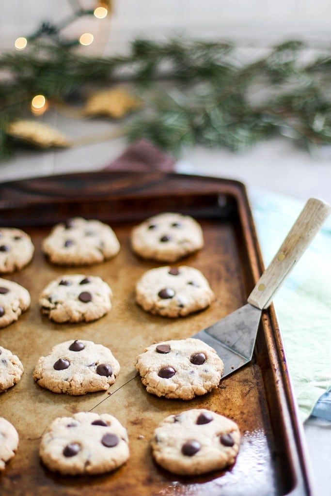 Paleo Chocolate Chip Cookies / These healthy treats are low sugar and full of good-for-you-ingredients. With only 5 ingredients, these take minutes to whip up.