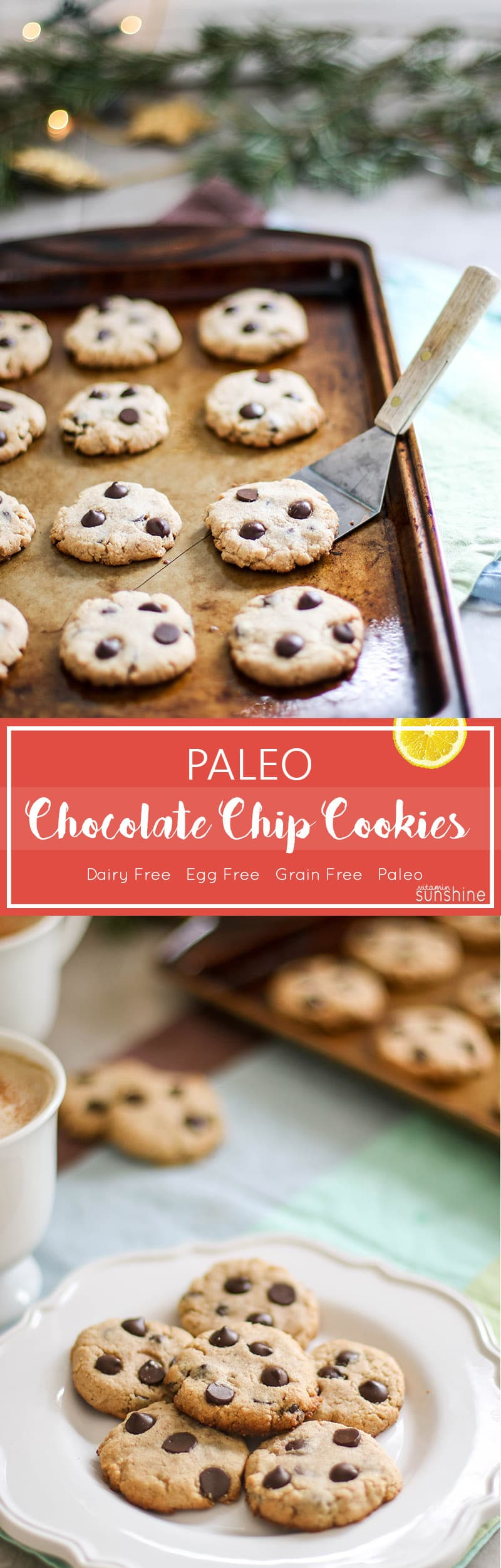 Paleo Chocolate Chip Cookies (5 Ingredients!) - Vitamin Sunshine