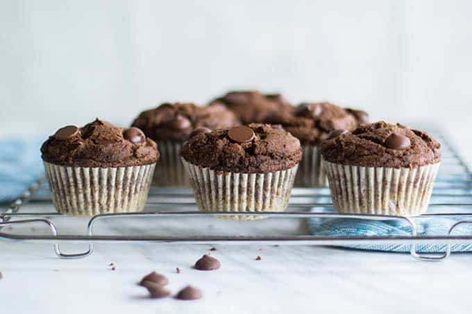 Lots of gluten free double chocolate chip muffins sitting on a cooling rack.