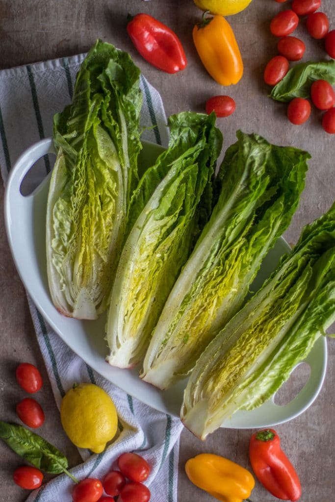 Romaine Salad / A simple romaine salad is elevated to drool-worth status by being grilled and topped with Italian salad toppings.