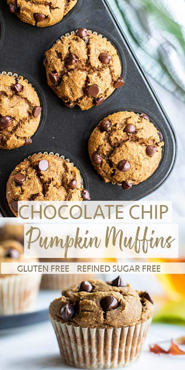 Pumpkin muffins in a tin, and a pumpkin chocolate chip muffin sitting in front of a cup of tea.