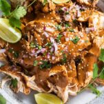 A close up look at a bowl of crockpot chicken mole with sesame seeds and red onions.