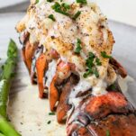 A lobster tail drizzled with cream sauce on a plate with asparagus.