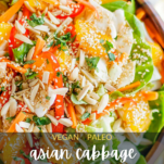 A close up look at a cabbage salad with oranges, almonds, and peppers.